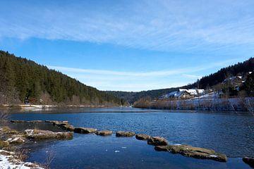 Nagold rivier nagoldtalsperre met stenen in het water in zon en onder blauwe hemel met gras en bomen van creativcontent