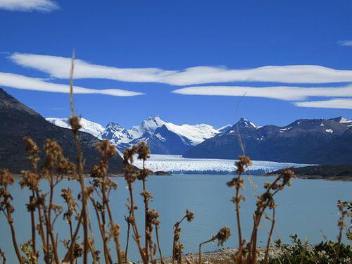 Perito Moreno Gletscher van