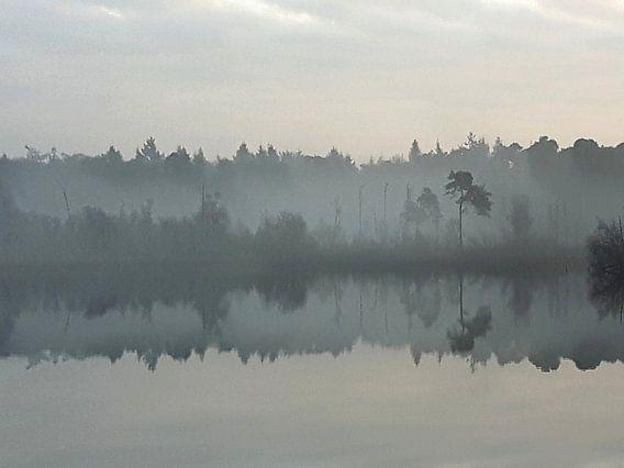 Weerspiegeling in ochtendnevel van Mirjam van Vooren
