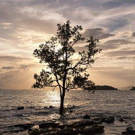 Een zonsondergang in Krabi, Thailand van Peter Korevaar