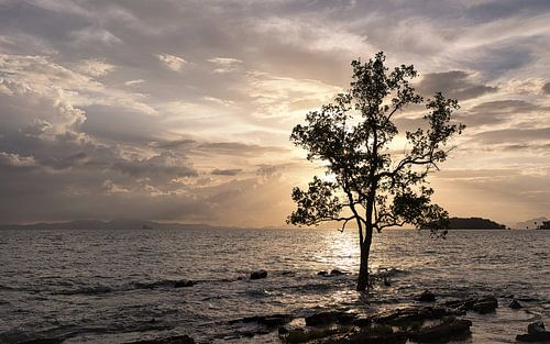 Een zonsondergang in Krabi, Thailand van