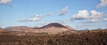 Lanzarote landscape panorama van Peter van Eekelen