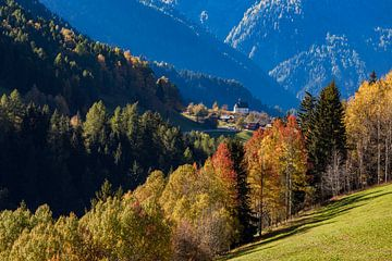 Automne près de Mühlebach en Valais (Suisse) sur Werner Dieterich