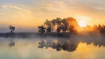 Leistungsstarke Sonnenaufgang an einem ruhigen nebligen lake_2 von Tony Vingerhoets