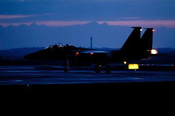 Strike Eagle in early evening van Nico van Remmerden