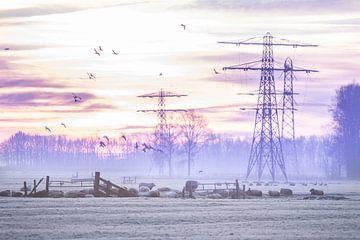 Winterse zonsopkomst von Jitske Cuperus-Walstra