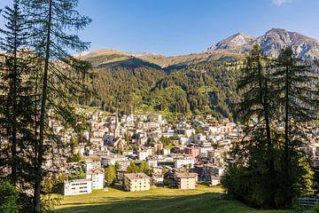 Sommer in Davos - Schweiz von Werner Dieterich