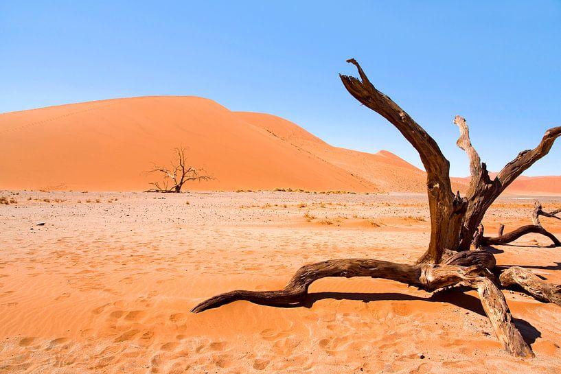 Landschap Namibië, Sossusvlei, Desert van Liesbeth Govers voor omdewest.com