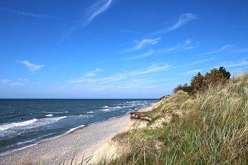 Op de steile kust van Ostsee Bilder