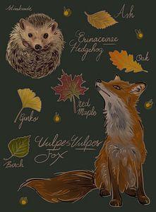 Vos en egel met herfst bladeren tafereel