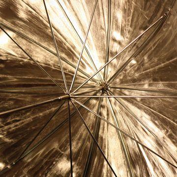 Gouden paraplu van Maurice Dawson