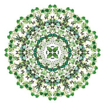 Mandala van planten van Bernice Bartling