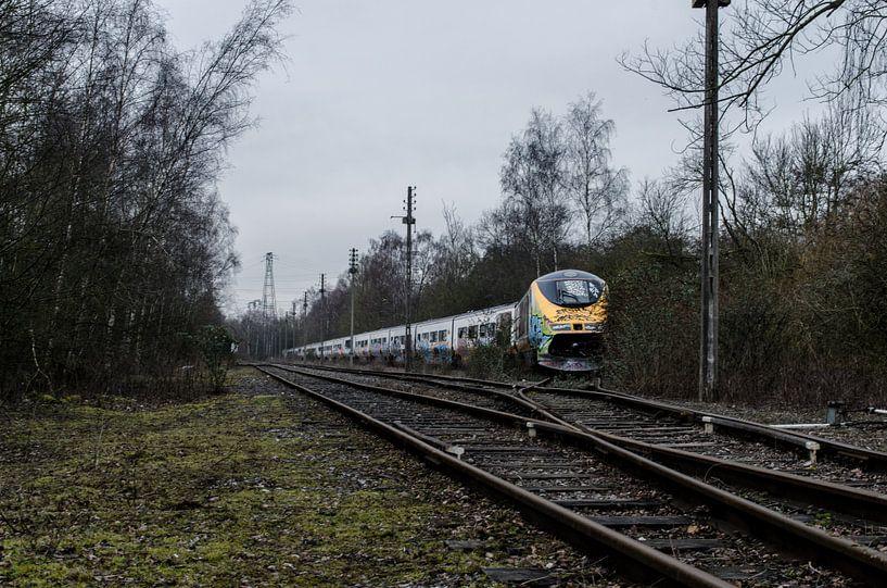 Abandoned Eurostar-trainset  von Willem van den Berge