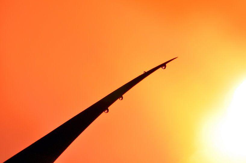 Dutch sunset with rich colors von Arno Wolsink