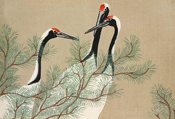 Kraniche aus Momoyogusa - Blumen von hundert Generationen, Kamisaka Sekka