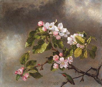 Stilleven. Kolibrie en Appelbloesem van Heade ca. 1875 van Rudy & Gisela Schlechter