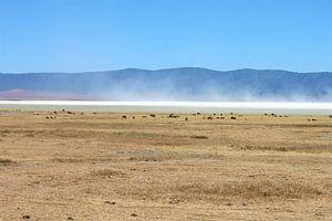 zoutvlakte ngorongoro