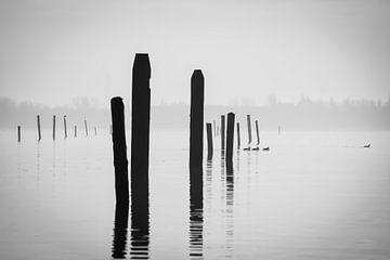 Wellenbrecher im Nebel von Sharona de Wolf