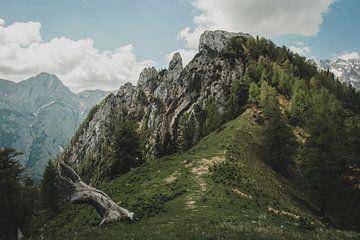 Kamnik Savinja Alpen van Paulien van der Werf