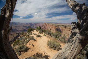 Grand Canyon geframed van Hans Jansen