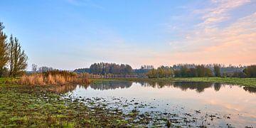 Spiegelbildliche Herbstfarben in der Horsterwold von Jenco van Zalk