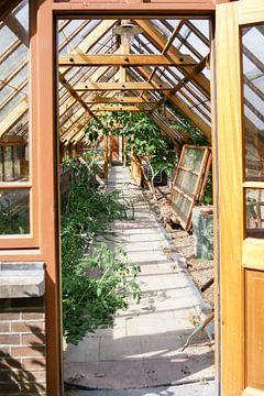 Utrecht - Doorkijk deur Oude Hortus Botanicus van Wout van den Berg
