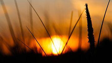 Sonnenuntergang auf Ameland von Rick de Visser