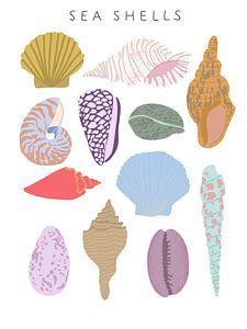 Sea shells von Sophia Amend