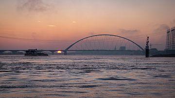 Hoog water op de rivier de Waal van Femke Straten