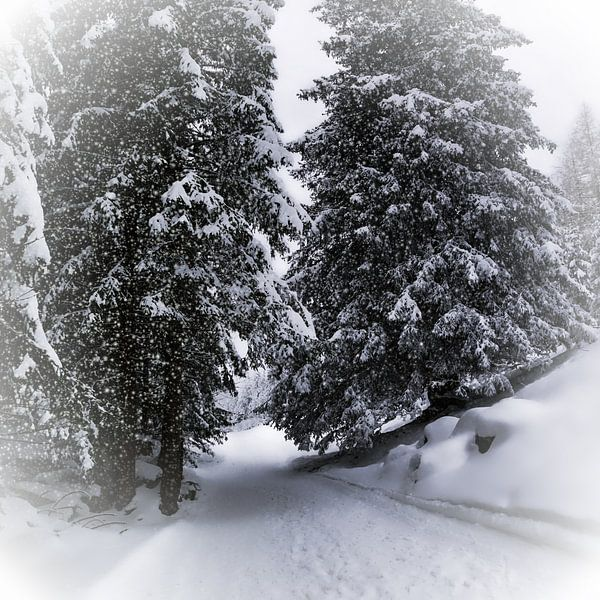 Bavarian Winter's Tale X
