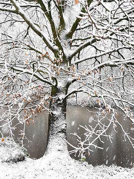 Winterse 'sferen' van Erna Kampman