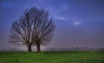 Sunrise Oudenaarde Langemeersen van Wim van D