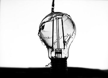 High key lightbulb van Nynke Altenburg