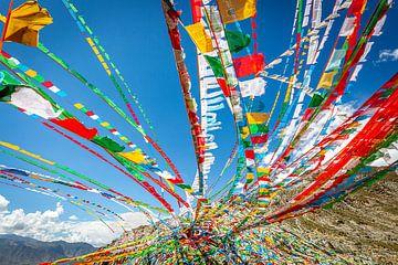 Tibetische Gebetsfahnen von Jack Donker