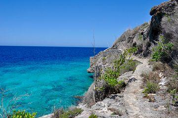 Zee en rotsen op Bonaire van Myrthe Visser-Wind