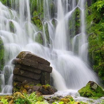 Waterfall Mountain Park Wilhelmshoehe van Gisela Scheffbuch