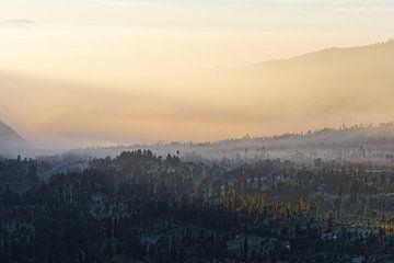 Indonesië - mistige sfeer op een plateau bij zonsopgang van Ralf Lehmann