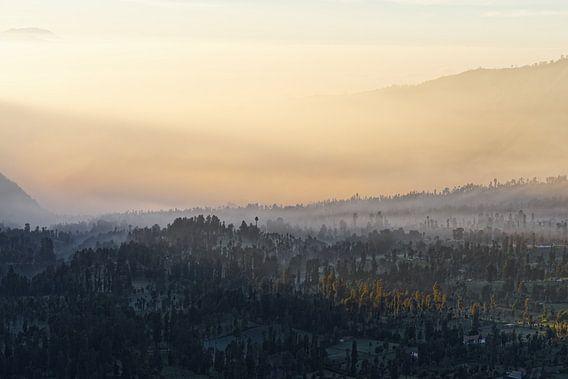 Indonesien - Nebelstimmung auf Hochebene bei Sonnenaufgang