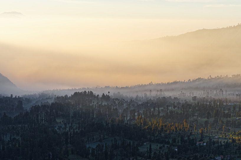 Indonesien - Nebelstimmung auf Hochebene bei Sonnenaufgang von Ralf Lehmann