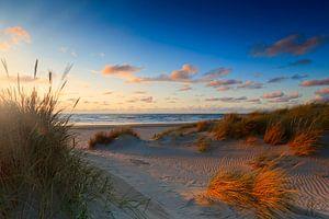 zonsondergang achter de Hollandse duinen van