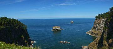 Ansichten von der Küste Oregons von Jeroen van Deel