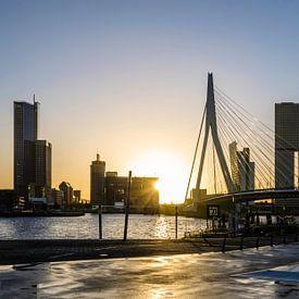 Waking up in Rotterdam van Ricardo Bouman   Fotografie