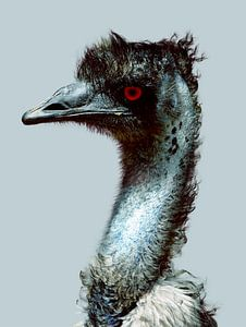 Emu Portrait van Christiaan Nowak
