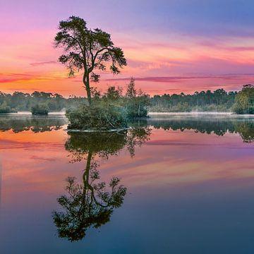 Rot und Türkis Sonne spiegelt sich in einem lake_1 von Tony Vingerhoets