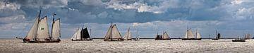 Segelschiffe der Braunen Flotte von Frans Lemmens