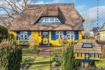Historisches Reetdachhaus in Born am Darß von Christian Müringer