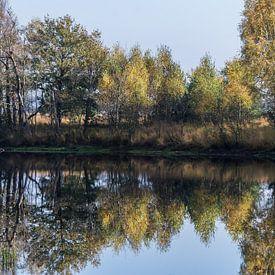 Herfst weerspiegeling von Yvonne van der Meij