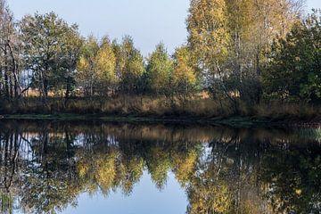 Herfst weerspiegeling van Yvonne van der Meij
