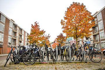 Fahrradschuppen mit Herbstfarben, Buitenveldert, Amsterdam Süd von Paul van Putten