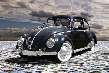 Der schwarze Käfer von Joachim G. Pinkawa